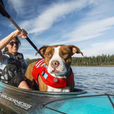 thumb_Ruffwear-Float-Coat-Canoeing_adaptiveResize_390_390.jpg