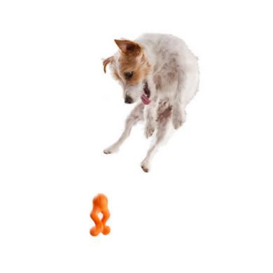 thumb_west-paw-design-tizzi-dog-fetch-toy_adaptiveResize_390_390.jpg