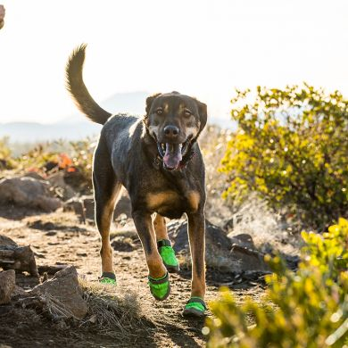 thumb_ruffwear-summit-trex-boots-brindle_adaptiveResize_390_390.jpg