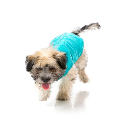 thumb_fuzzyard-hoodie-blue-dog-front_adaptiveResize_390_390.jpg