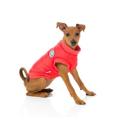 thumb_fuzzyard-hoodie-red-dog-side_adaptiveResize_390_390.jpg
