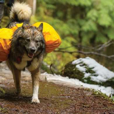 thumb_ruffwear-saddlebag-cover-front_adaptiveResize_390_390.jpg