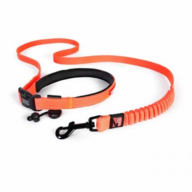 thumb_ezydog-road-runner-leash-blaze-orange_adaptiveResize_390_390.jpg