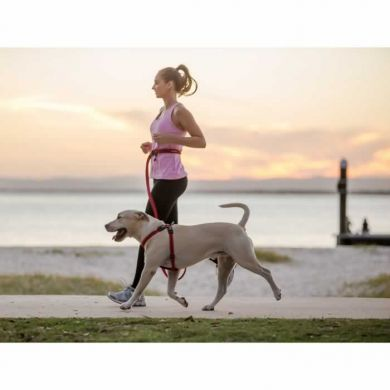 thumb_ezydog-road-runner-leash-lab_adaptiveResize_390_390.jpg