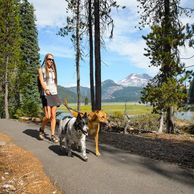 thumb_ruffwear-knot-a-long-leash-bend_adaptiveResize_390_390.jpg