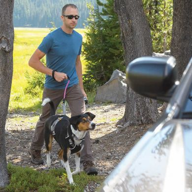 thumb_ruffwear-load-up-harness-walk_adaptiveResize_390_390.jpg