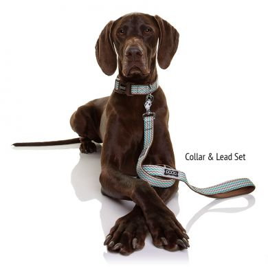 thumb_Benji collar & lead set_adaptiveResize_390_390.jpg