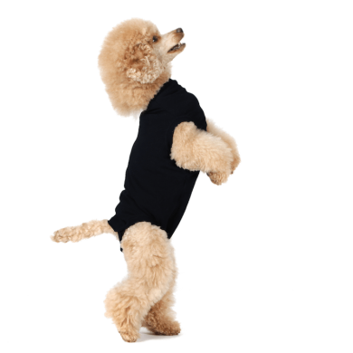 thumb_Recovery_Suit_Dog_Black_3_adaptiveResize_390_390.png