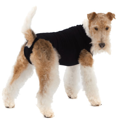 thumb_Recovery_Suit_Dog_Black_4_adaptiveResize_390_390.png