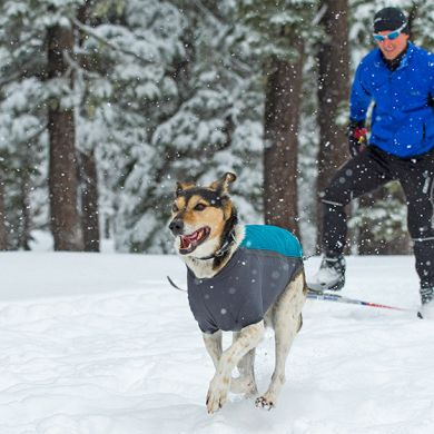 thumb_ruffwear-powderhound-dog-jacket-blue-snow_adaptiveResize_390_390.jpg