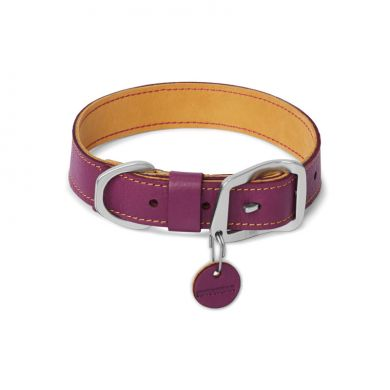 thumb_Ruffwear-Frisco-Collar-Wild-Plum-Purple_adaptiveResize_390_390.jpg