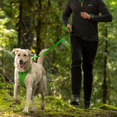 thumb_Ruffwear-Front-Range-Leash-Running_adaptiveResize_390_390.jpg