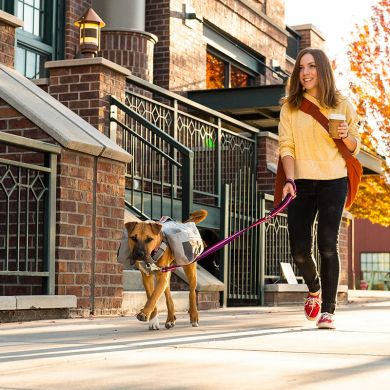 thumb_Ruffwear-Commuter-Dog-Pack-Coffee_adaptiveResize_390_390.jpg