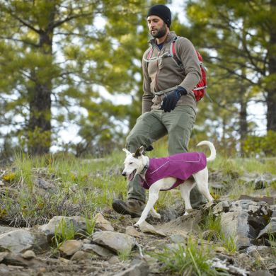 thumb_ruffwear-k9-overcoat-purple-pines_adaptiveResize_390_390.jpg