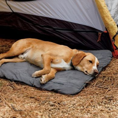 thumb_ruffwear-mt-bachelor-pad-sleep_adaptiveResize_390_390.jpg