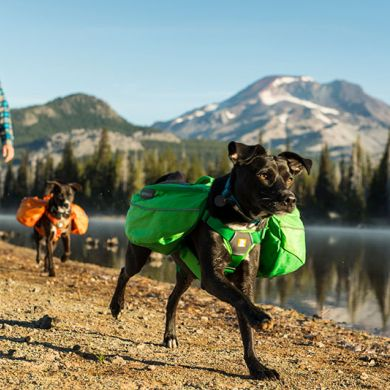 thumb_Ruffwear-Approach-Pack-Running_adaptiveResize_390_390.jpg