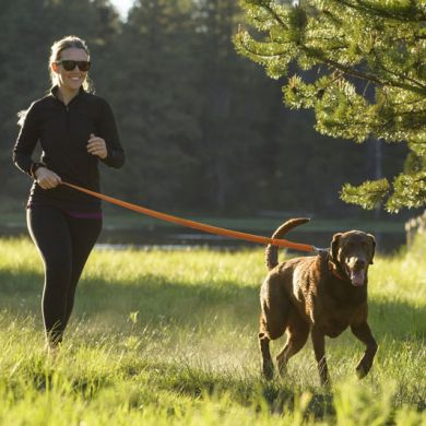 thumb_Ruffwear-Roamer-Leash-Orange-Running_adaptiveResize_390_390.jpg